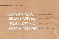 Brushot 4 Font Plus Swash Product Image 2