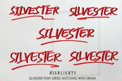 SILVESTER   6 FONT BRUSH PEN Product Image 2