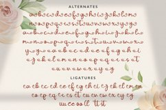 Ajuslly - Modern Calligraphy Font Product Image 4