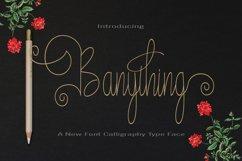 Banything Product Image 1
