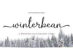 Winterbean Product Image 1