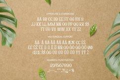 Abony Acacia Font Product Image 4