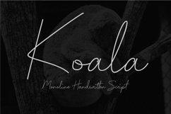 Koala - Monoline Handwritten Script Product Image 1
