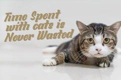 Little Kitties Product Image 4