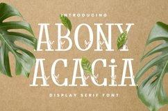 Abony Acacia Font Product Image 1