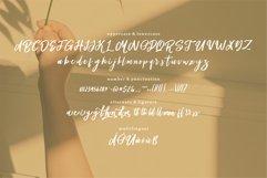 Bellomi - A Stylish & Beauty Script Font Product Image 5