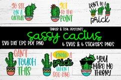 Sassy Cactus SVG Bundle Product Image 1