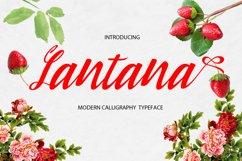 Lantana Product Image 1