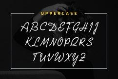 Juliana Kasman Script Product Image 6