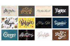 Mega Exclusive Font Bundle - 350 Font Product Image 17