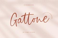 Gattone Signature Product Image 1