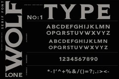 LONE WOLF Serif font Product Image 3