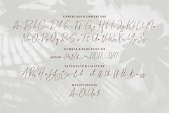 Brightly - A Signature Font Product Image 5
