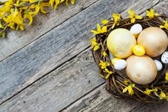 Nest with golden and yellow eggs with flowers on Wooden Product Image 1