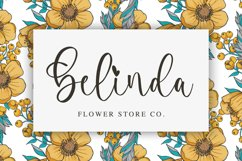 Camerline - Modern Calligraphy Font Product Image 2