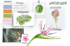 Watercolor tropical clipart, flower and leaves Product Image 3