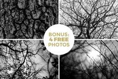 24 Occult Symbols Plus 4 Free Photos Product Image 6
