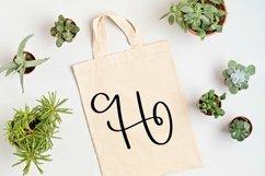 Web Font Monogram Letters Font - Swoosh-y Beautiful Hand Let Product Image 4