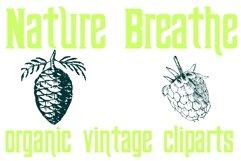 Nature Breathe Product Image 5