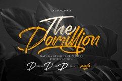 Domillion Brush Font Product Image 1