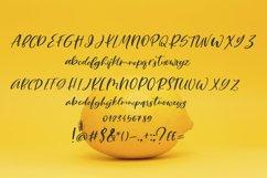 Lemony Cheesecake Font Duo Product Image 5