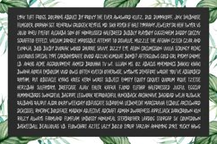Mollysh Calligraphy Font Product Image 2