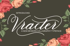 Vracter Font Duo Product Image 1