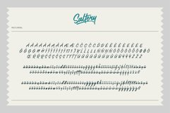 Saltery Brush Font Product Image 5