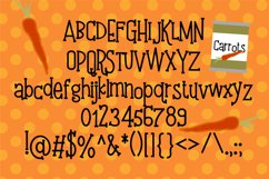 PN Kick the Can Serif Product Image 2