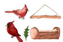 Watercolor cardinal clipart, Winter clipart, Merry christmas Product Image 2