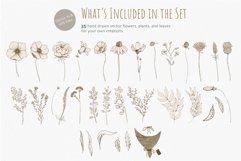 Retro Style Floral Vector Clipart Bundle - Flowers, Plants Product Image 2