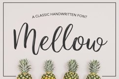 47 IN 1 FONT BUNDLE Product Image 6