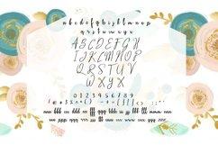 Santa Barbara Stylish Script Font Product Image 2