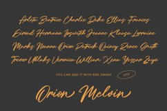 Holly Wings Calligraphic Font Product Image 9