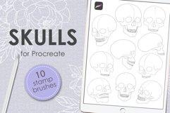 Skulls procreate stamp brushes Product Image 1