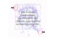 Venus Font Product Image 3