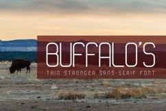 BUFFALO'S Thin Stronger Sans Serif Font Product Image 1
