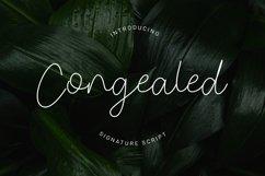Congealed - Signature Font Product Image 1