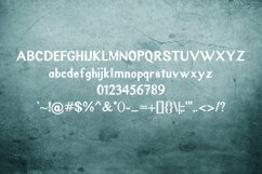 Rustic Oak A Grunge, Solid, and Stencil Font Product Image 3