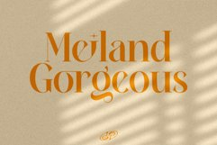 Meiland Gorgeous Product Image 1