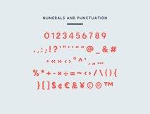 Enrique - 8 Fonts Fashionable Elegant Sans Serif Font Product Image 3