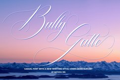 Bully Gatte Product Image 1