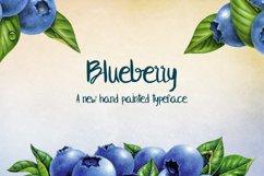 Blueberry Product Image 2