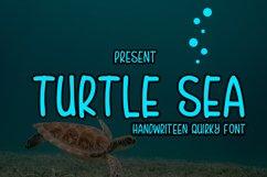 Turtle sea Product Image 1
