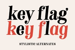 Neato Serif Font Family Product Image 4