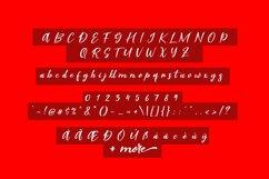 Scarlet Pen Script Product Image 6