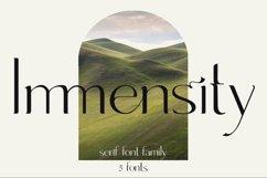 Immensity - ligature serif font family Product Image 1