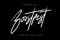 Boostpest Signature Brush Font Product Image 1