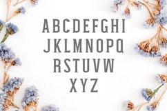 Nasya Slab Serif 4 Font Family Pack Product Image 6