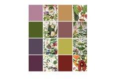 Vintage Botanical Full Page Floral Sheets 8.5 x 11, PDF Product Image 3